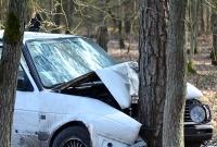Volksawagenem w drzewo i do szpitala! Wypadek na drodze gruntowej