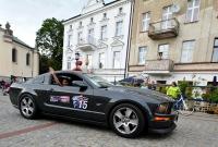 Mustangi pod katedrą - foto: Joanna Pomorska