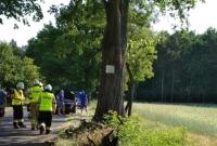Wypadek na drodze do Skorzęcina! Volkswagen zakończył jazdę na drzewie