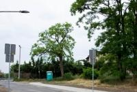 Mieszkańcy mogą spacerować bezpieczniej. Chodnik wzdłuż ul. Orcholskiej ukończony