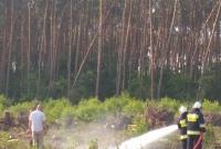 Pożar przy lesie w Cielimowie! Stary sprzęt OSP nie zawiódł