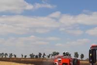 Dwa duże pożary zboża! Spłonęło prawie 40 hektarów