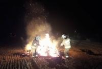 Pożar balotów w Golimowie