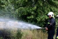 Pożar zboża w Powiadaczach! Zastępy OSP uratowały plony rolników