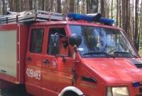 Pożar lasu w Powidzu! W akcji samolot gaśniczy