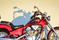 Sprzedam motocykl Honda VT 600C