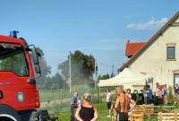 Festyny, osy, szerszenie, pożar i krowa w piwnicy! Pracowita niedziela strażaków z Witkowa