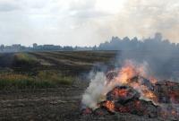 Pożar na polu w Berkowie