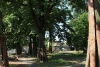 Trwa rewitalizacja Parku Trzech Kultur