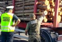 Wspólne kontrole przewozu drewna