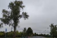 Ponad 100 miejsc postojowych na ul. Biskupińskiej