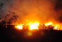 Pożar hali w Braciszewie! W akcji kilkanaście zastępów Straży Pożarnej