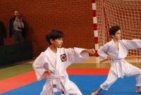 Wielkopolska Otwarta Liga Karate zdominowane przez zawodników Inochi