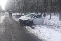 Auto uderzyło w drzewo!