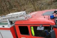 17 zastępów Straży Pożarnej gasiło las w Cielimowie
