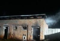 Kolejny pożar w Golimowie