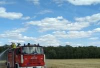 Pożar zboża stanowił zagrożenie dla lasu
