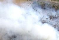 Pożar lasu w Sokołowie pod Wrześnią! W akcji strażacy z naszego powiatu i samolot gaśniczy