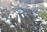Sterty śmieci zniknęły po interwencji mieszkanki