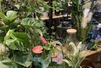 Zielona fabryka Akademii Kwiatów, czyli niesamowite lasy w szkle tworzone w Gnieźnie!