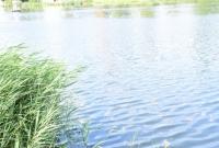 Przyducha w Jeziorze Jelonek? Czy powód masowego śnięcia ryb jest inny?