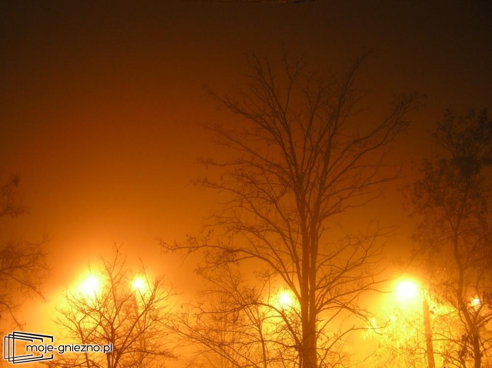 Bezmyślne bieganie we mgle