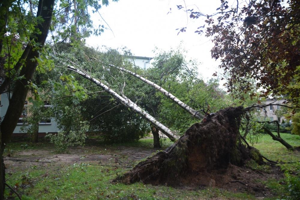 Ostrzeżenie meteorologiczne: silny wiatr