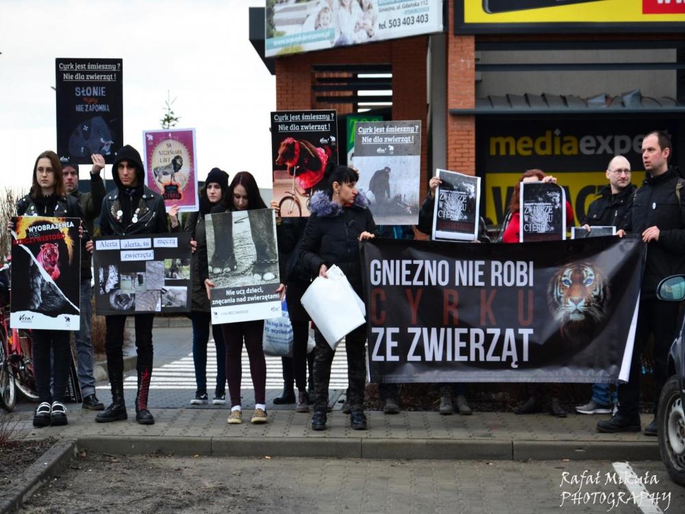Ponad 2 800 podpisów i niespełna 20 osób na manifestacji