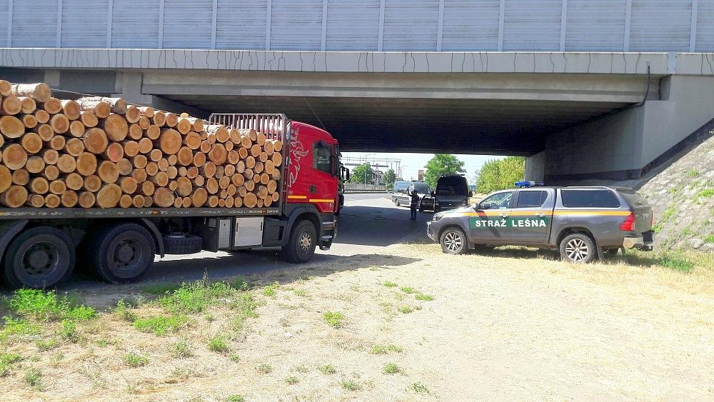 Prawie 30 tys. zł kar za nienormatywne przewozy drewna!