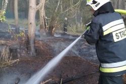 Pożar lasu przy powidzkim lotnisku!