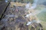 Pożar zboża i lasu w Gołąbkach