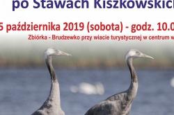 Wycieczka ornitologiczna po Stawach Kiszkowskich