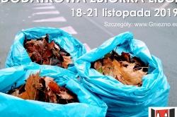 Dodatkowa zbiórka liści