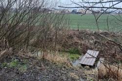 Wandale zniszczyli Leśny Skwer w Czerniejewie