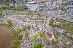 Statystyki pogrzebów - porównujemy rok 2019 i 2020 na cmentarzu Św. Krzyża w Gnieźnie