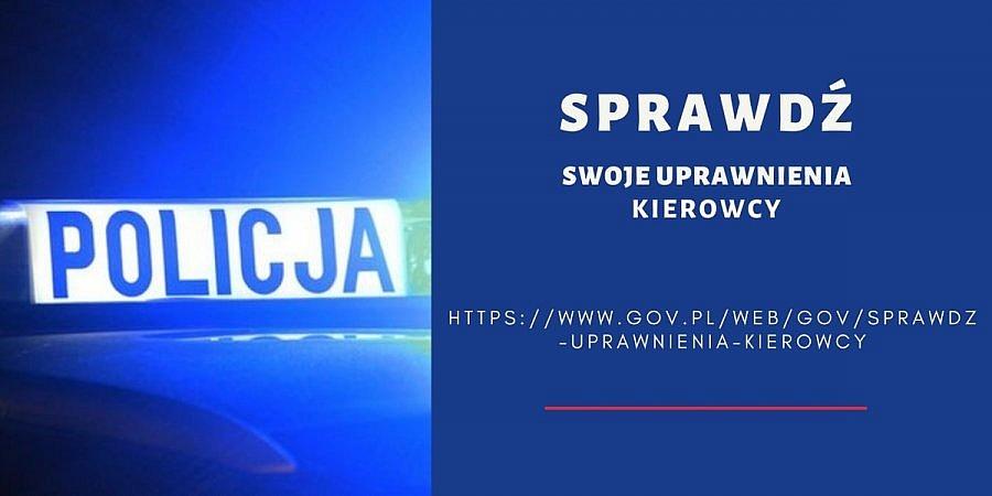 Sprawdź uprawnienia kierowcy na stronie gov.pl