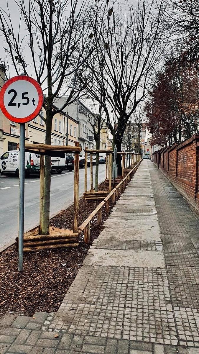 Nowa zieleń na ulicach Gniezna