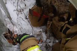 Strażacy uratowali kota, który utknął w przewodzie wentylacyjnym