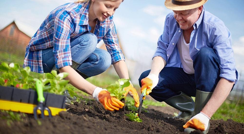 O czym należy pamiętać przy rozpoczynaniu prac ogrodniczych?