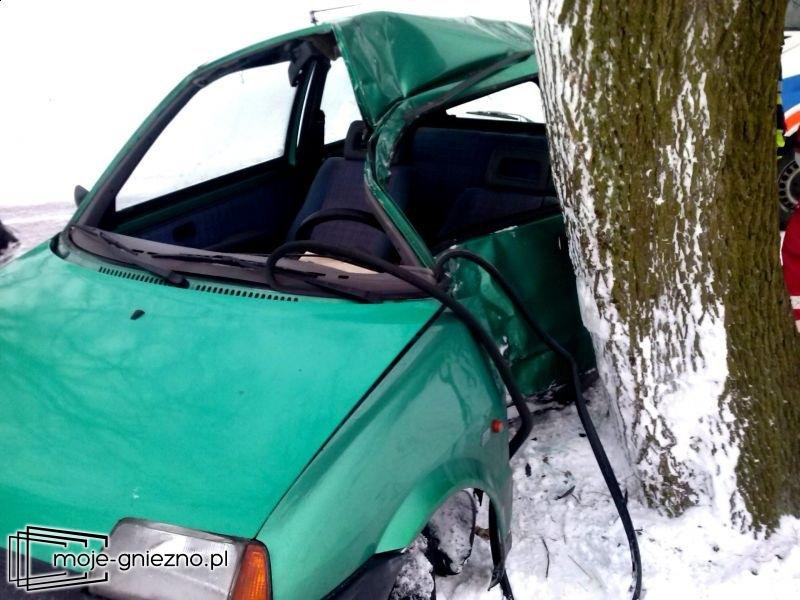 Wypadek na trasie Trzemeszno-Trzemżal