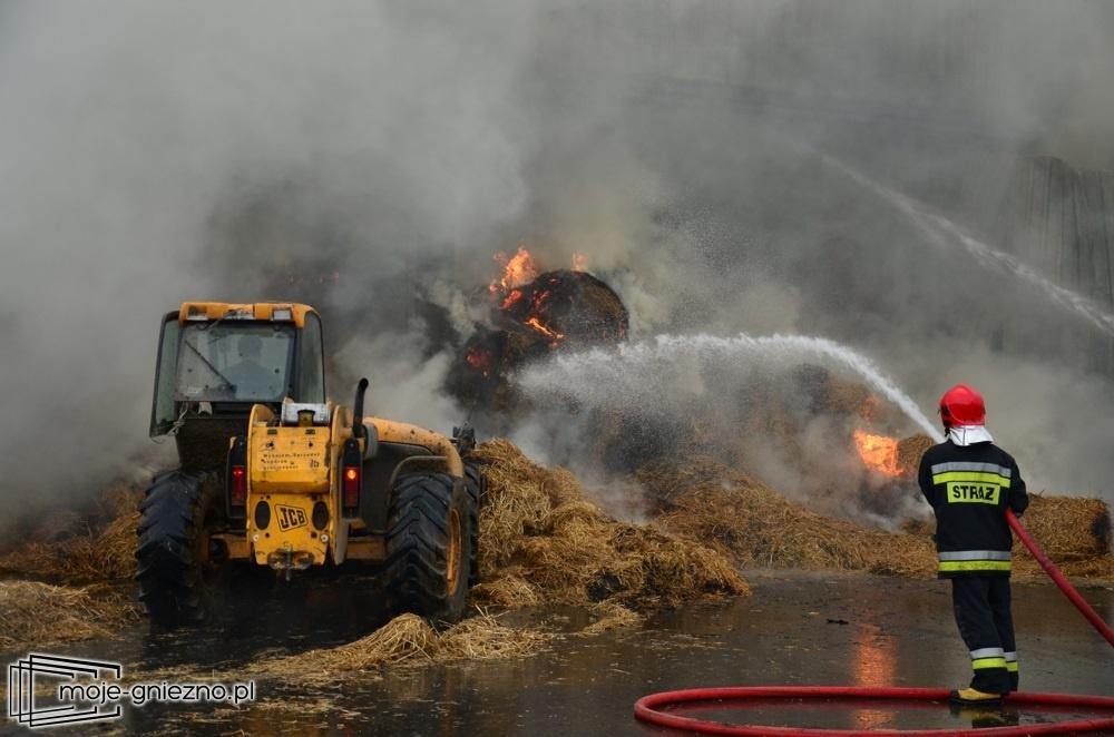 17 jednostek straży na pożarze magazynu słomy w Ostrowitem