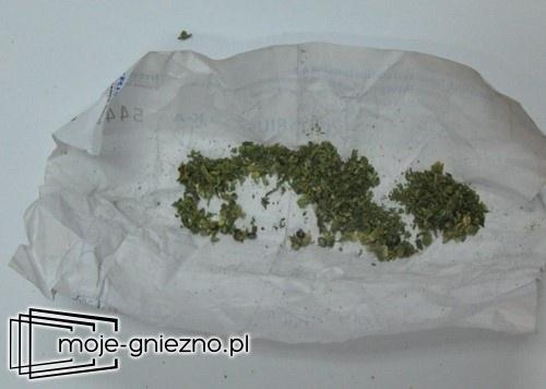 Posiadali narkotyki - trafili za kratki