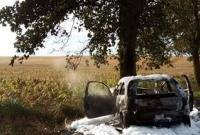 Ominęła sarnę, ale uderzyła w drzewo! Auto doszczętnie spłonęło!