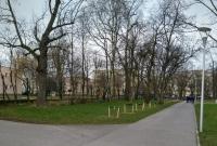 Wandale połamali drzewka w Parku Trzech Kultur!