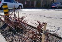Ogrodził rośliny na chodniku drutem kolczastym! Interweniowała Straż Miejska