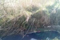 Ktoś kolejny raz zatruwa Jezioro Koszyk!