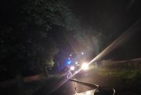 Próbował ominąć zwierzę na drodze! Bus uderzył w drzewo i stanął w płomieniach!