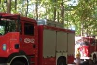 Pożar lasu w Skorzęcinie