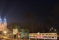 Mieszkańcy bronią drzew na Wenecji! Czy władze miasta wezmą to pod uwagę?