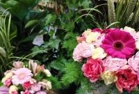 Dzień Matki z Akademią Kwiatów